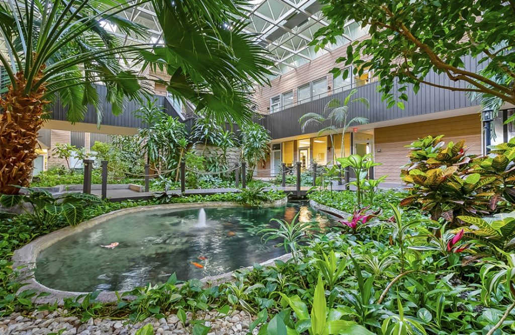 Fountain and pond with goldfish in atrium - 3925 N. I-10 Service Rd. W., Metairie, Louisiana 70002 - location of Kramer Psychiatric Services - Greater New Orleans Psychiatrist